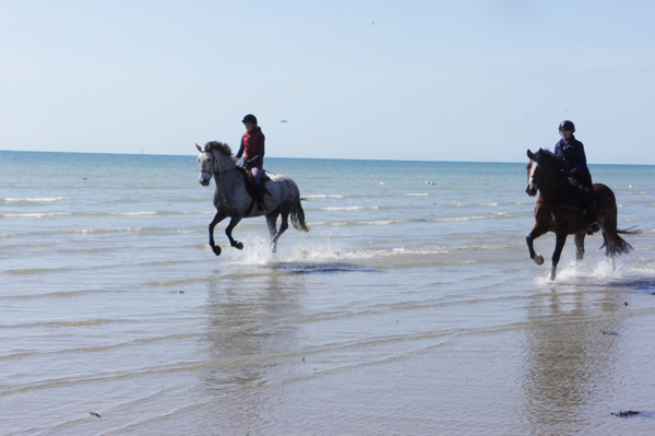 Judy Fry and Balance Saddles riding by the shore